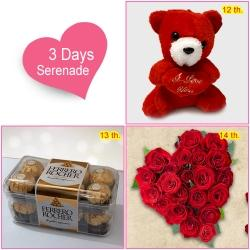 3 Day Serenade for Love of your Life