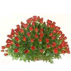 Expressive Assortment of 150 Dutch Roses in Red