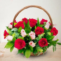 Classic Arrangement of 18 Pink and Red Roses for Mom