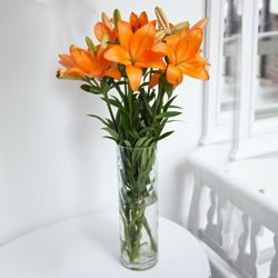 Fashionable Vase Filled with 6 Pcs. Mixed Lilies