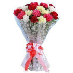 Expressive Mixed Carnations Arrangement <br><br>