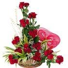 Striking Arrangement of Dutch Red Roses