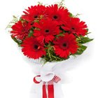 Precious Bloom Red Gerberas Bouquet