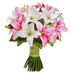 Elegant Looking Bouquet of 10 Pink & White Lilies
