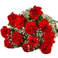 Shop for an elegant Hand Bunch of Red Carnations