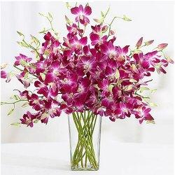 Brilliant Glass Vase Arrangement of Orchids