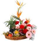 Regal Flowers with 5 Kg. Fruits Basket