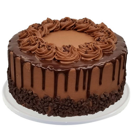 Appetizing Chocolate Cake from Taj or 5 Star Hotel Bakery