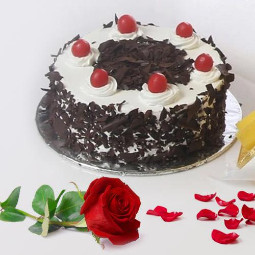 Divine Black Forest Cake and a Fresh Red Rose