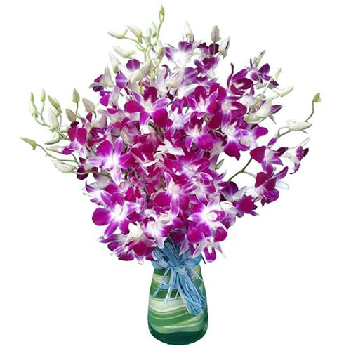 Order Orchids in a Glass Vase Online