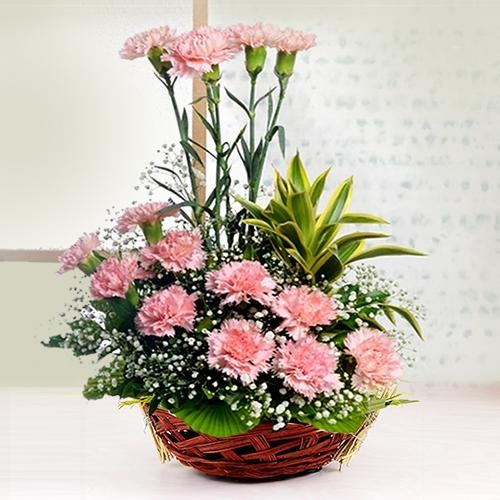 Glamorous Love Basket of 12 Carnations in Pink Color