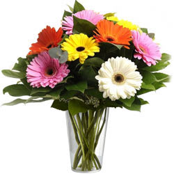 Send Mixed Gerberas in a Glass Vase Online