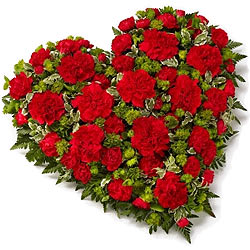 Book Online Red Carnations in Heart Shape