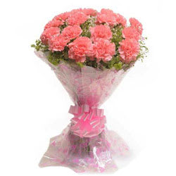 Pretty Bunch of Pink Coloured Carnations