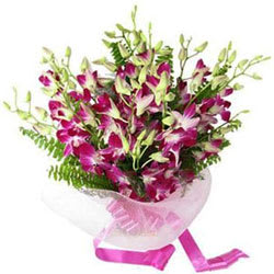 Book Orchids Stems Online