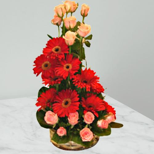 Book Arrangement of Roses N Gerberas Online