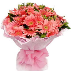 Online Bouquet of Pink Gerberas