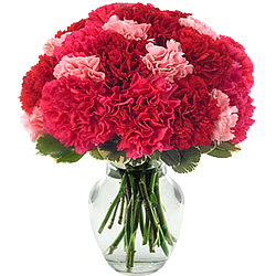 Send online this lovely Glass Vase full of Pink & Red Carnations