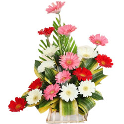 Gift Online Arrangement of Mixed Gerberas