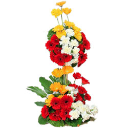 Book Gerberas Arrangement Online