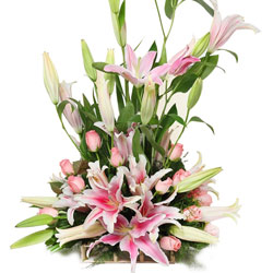 Buy Online Arrangement of Pink Roses N Lilies