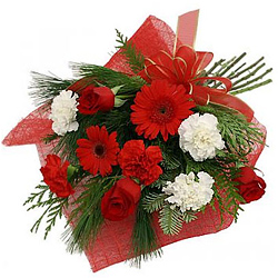Enchanting Hand Bunch of Red Roses, Red Gerberas along with Red and White Carnations