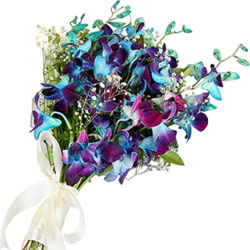 Book Online Blue Orchids Bouquet