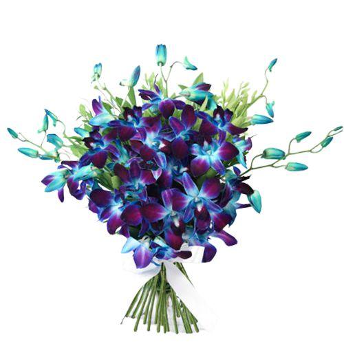 Book Online Blue Orchids Bouquet
