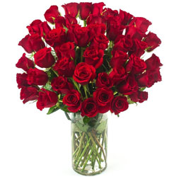 Order Red Roses in a Vase Online