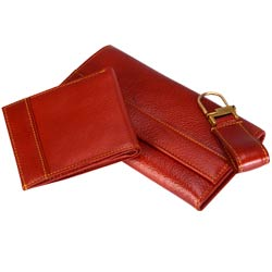 Long Leather Wallet with transparent flap & zip